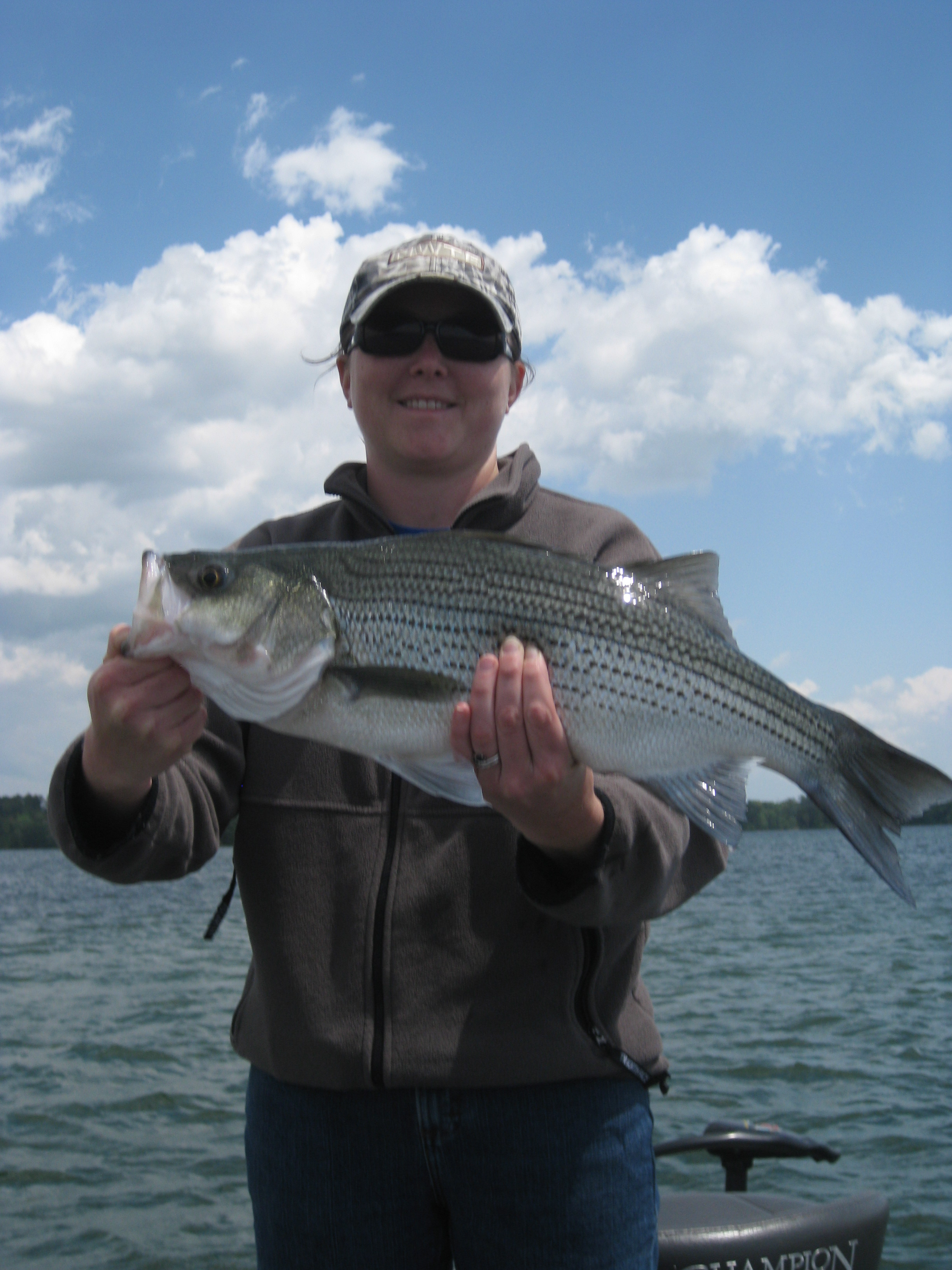 April 26 hartwell striped fishing report need some fish for Striped bass fishing reports
