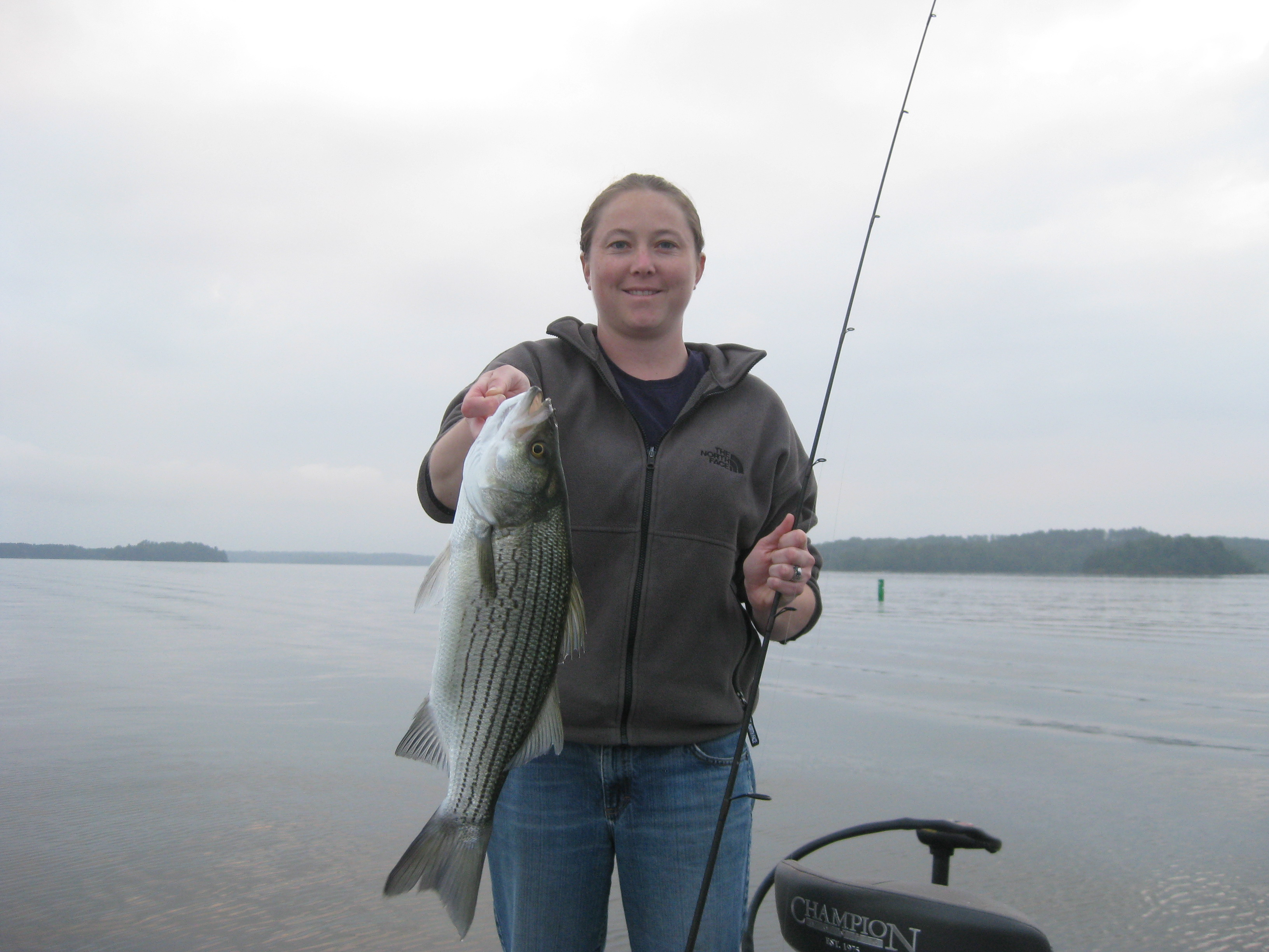 lake hartwell striped bass and largemouth guide fishing