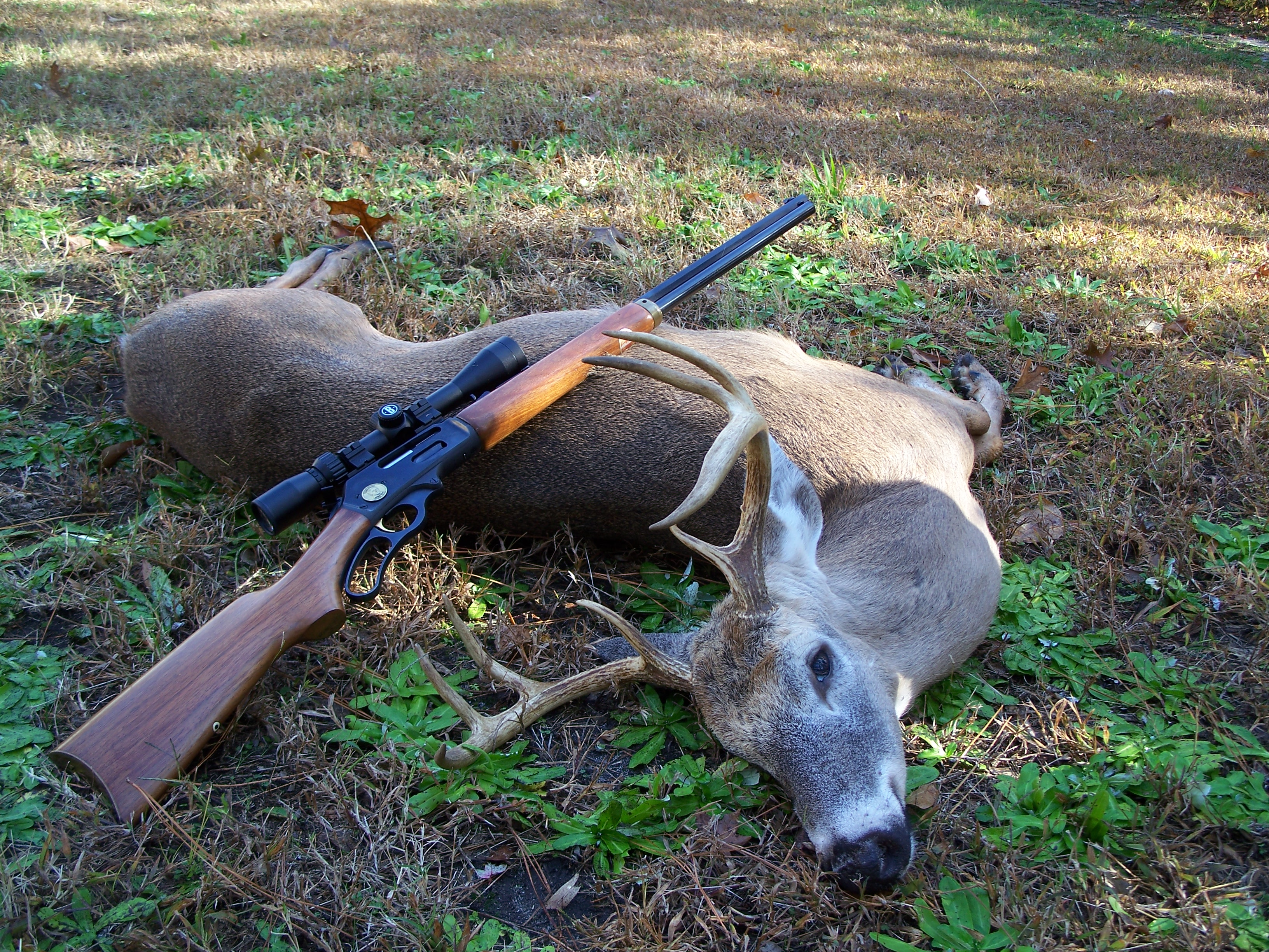 Western north carolina deer hunting guides charters up for Nc hunt and fish